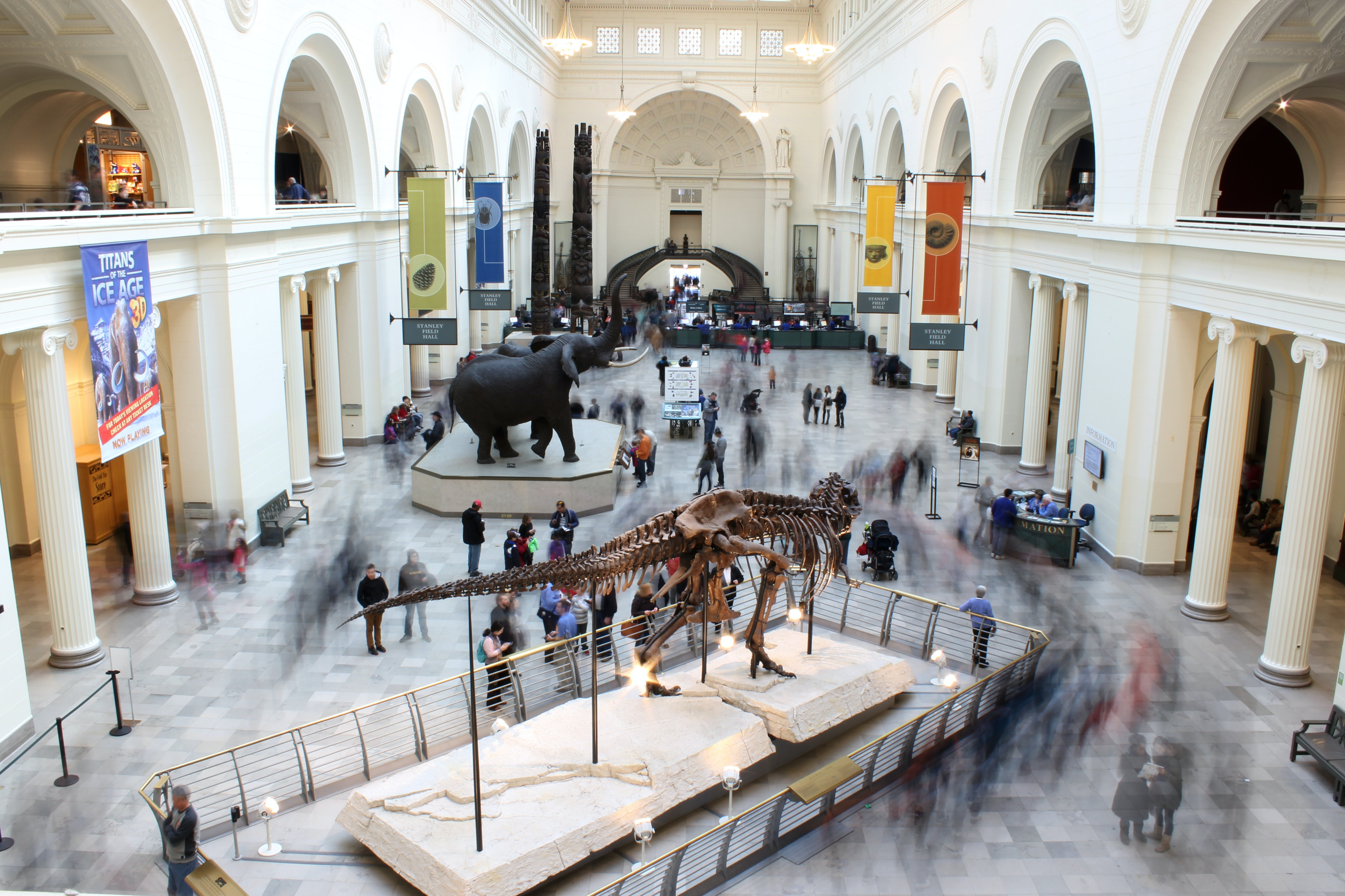 The Field Museum, Chicago, United States