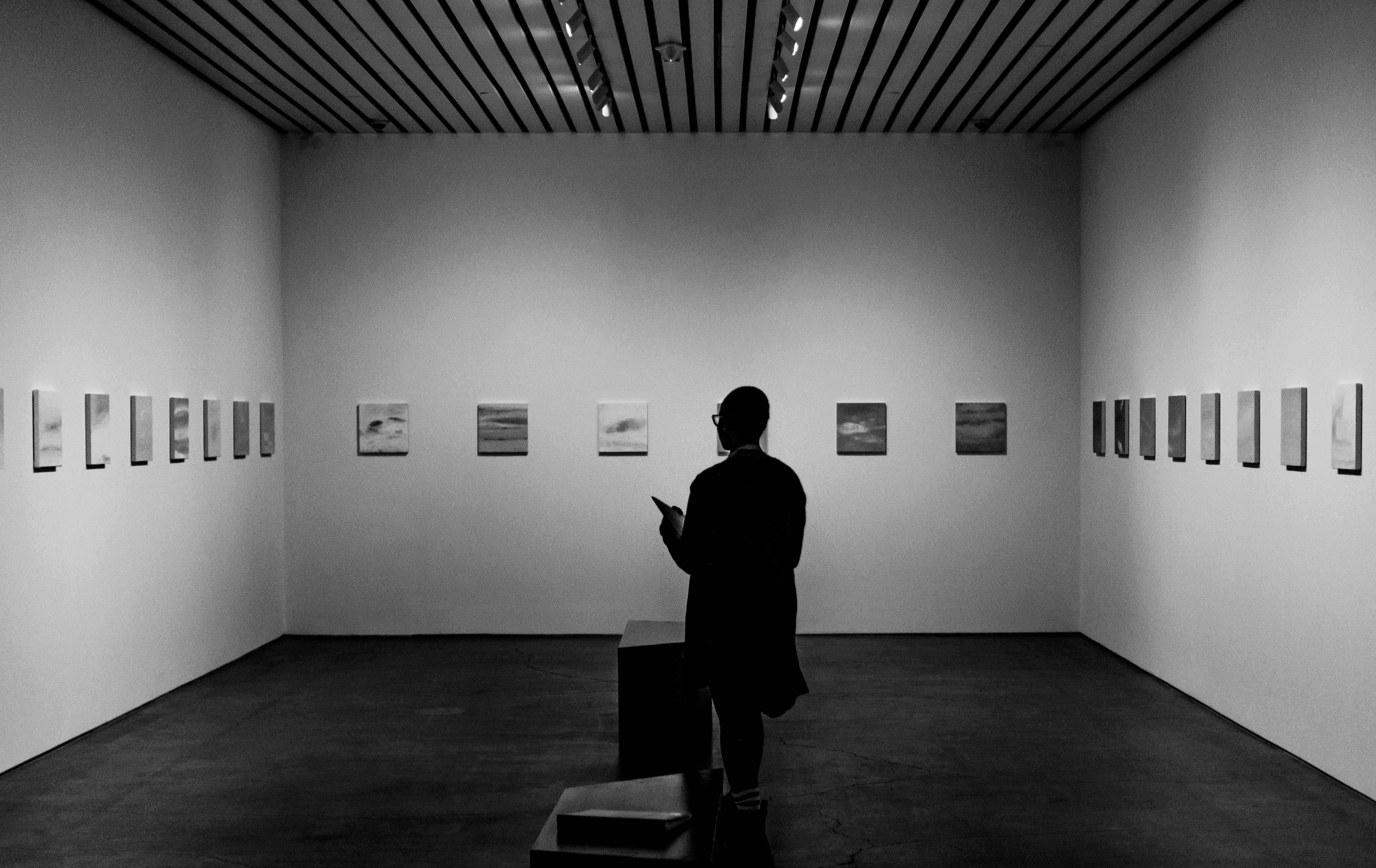 person looking at art in a museum