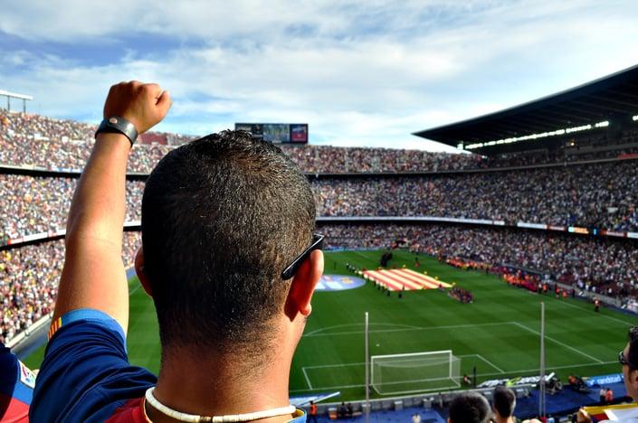 fan at stadium